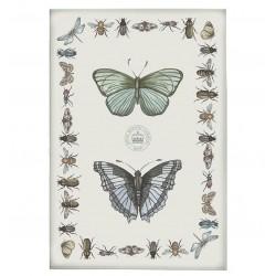 Ścierka Kuchenna Motyle