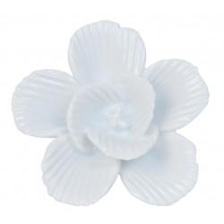 Gałki Meblowe Kwiat C