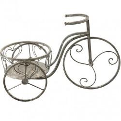 Kwietnik Prowansalski Rower