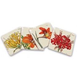 Taca Prowansalska Podłużna Kwiaty i Ptaki