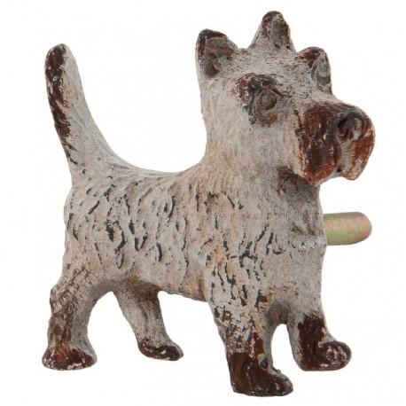 postarzane gałki o kształcie psa
