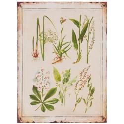 Obraz Vintage z Roślinami