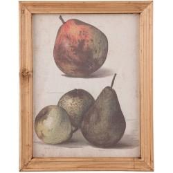 Obraz z Owocami B