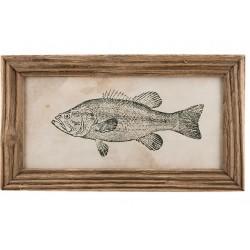 Obrazek z Rybą A