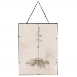 Obraz Retro z Rośliną A