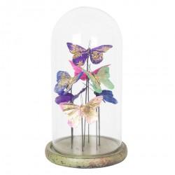 Dekoracja w Szklanym Kloszu Motyle C