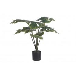 Roślina Sztuczna Belldeco Filo Donica 1