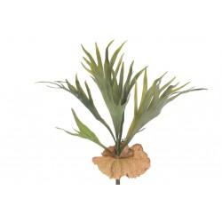 Roślina Sztuczna Belldeco Płaskla 2