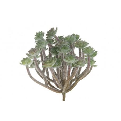 Roślina Sztuczna Belldeco Sukulent