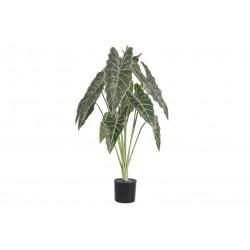Roślina Sztuczna Belldeco Syngonium Donica