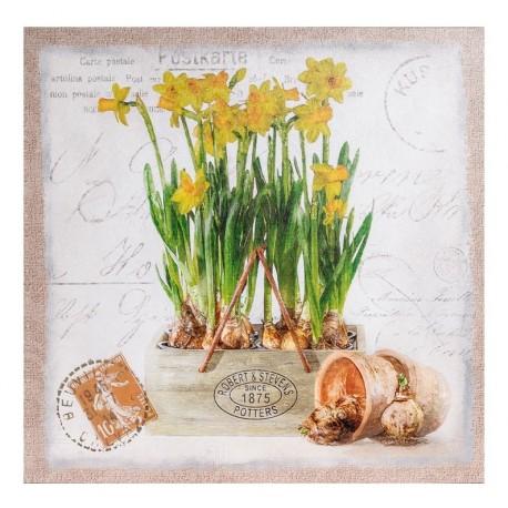 Kwadratowy jasny obrazek z żółtymi żonkilami