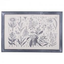 Obraz z Gatunkami Roślin Chic Antique A