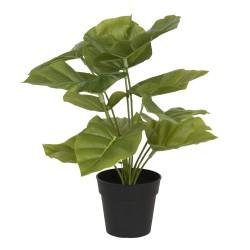 Sztuczna Roślina w Doniczce A Clayre & Eef
