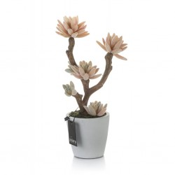 Sztuczny Kaktus w Doniczce Aluro C